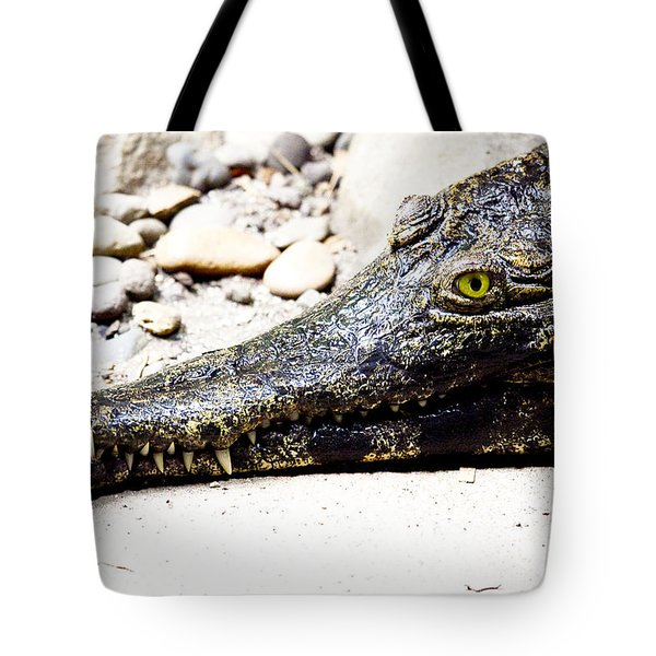 Eye Of The Croc Tote Bag by Rich Collins
