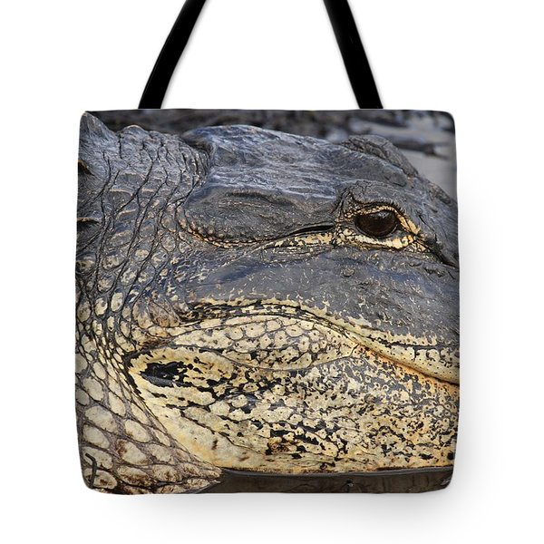 Eye Of The Gator Tote Bag by Adam Jewell