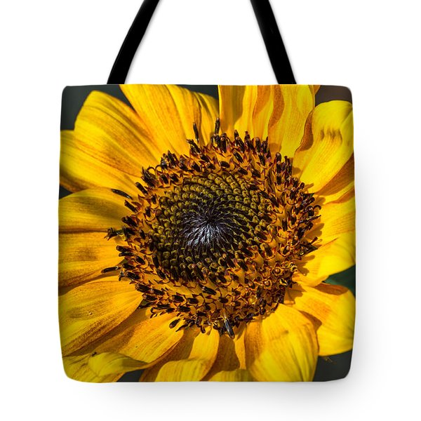 Eye Of The Sun Tote Bag by Michael Moriarty