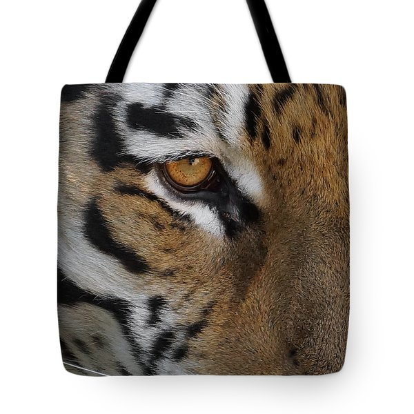 Eye Of The Tiger Tote Bag by Ernie Echols