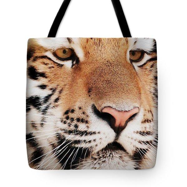 Eye Of The Tiger Tote Bag by Ramona Johnston