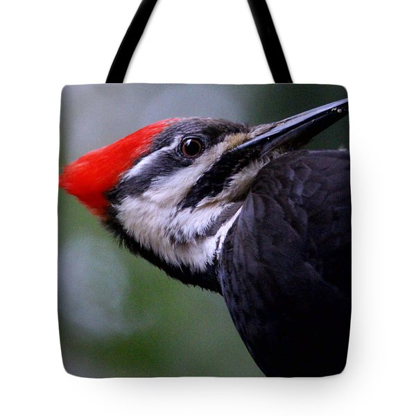 Eye To Eye With Big Woody Tote Bag by Kym Backland