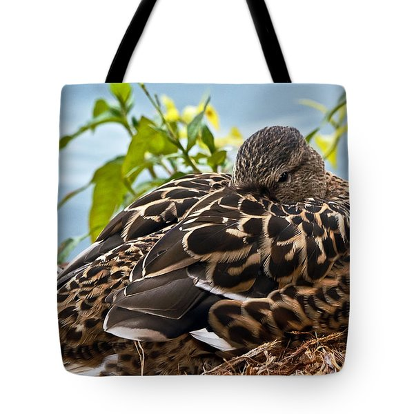 Tote Bag featuring the photograph Eye Watching You by Kate Brown