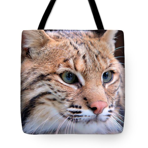 Eyes Of A Lynx Tote Bag