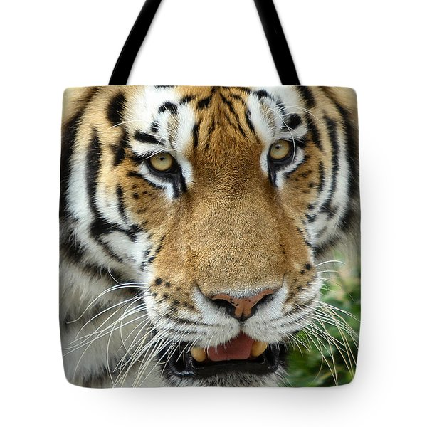 Tote Bag featuring the photograph Eyes Of The Tiger by John Haldane