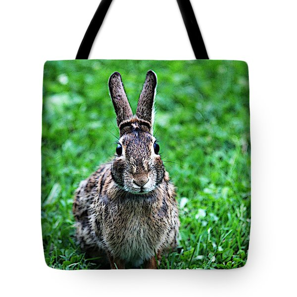 Tote Bag featuring the photograph Eyes Wide Open by Trina  Ansel