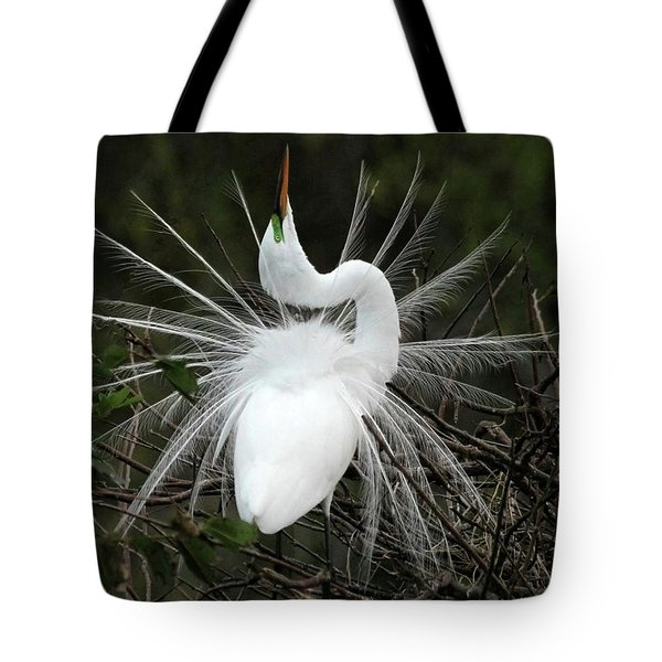 Tote Bag featuring the photograph Fabulous Feathers by Sabrina L Ryan