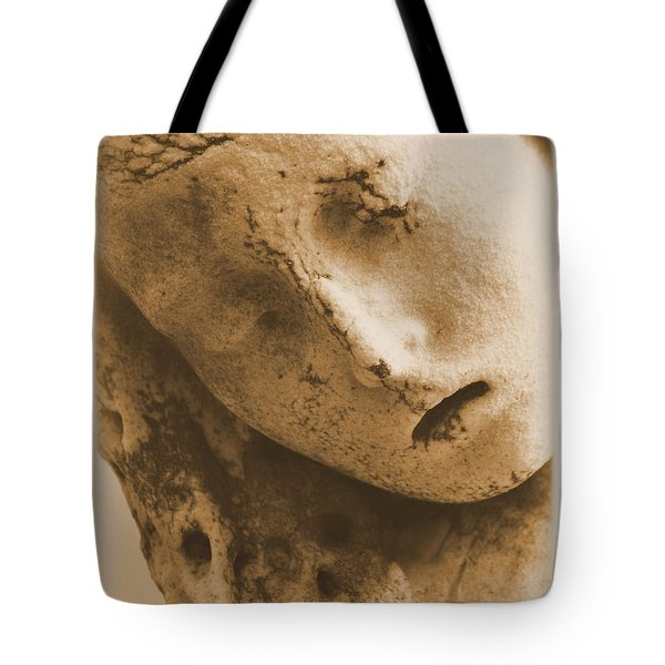Tote Bag featuring the photograph Face Of An Angel by Nadalyn Larsen