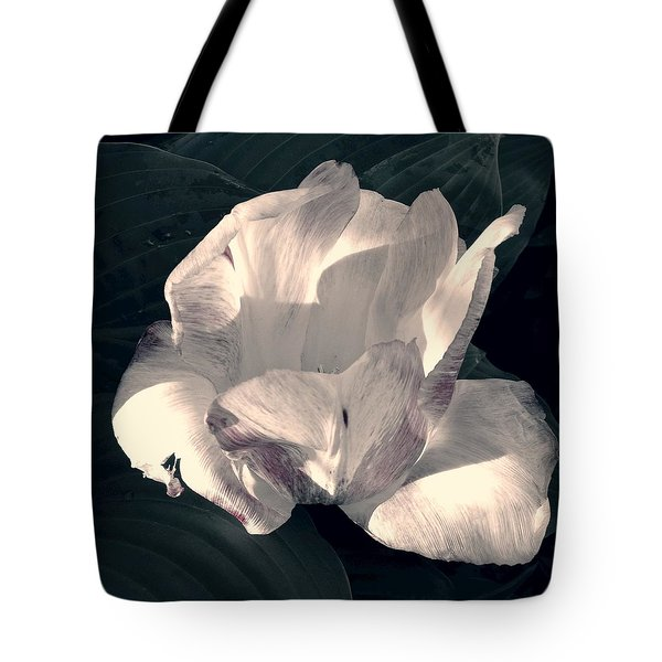 Tote Bag featuring the photograph Faded Beauty by Photographic Arts And Design Studio