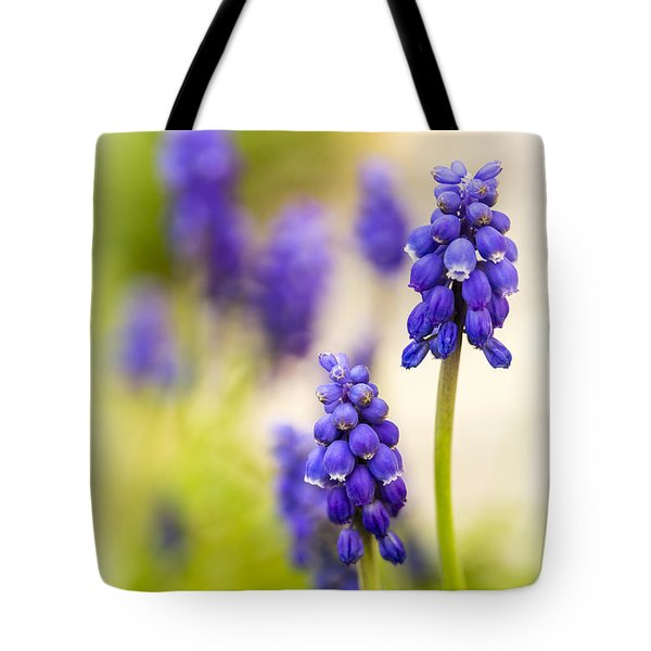 Fading Tote Bag by Caitlyn  Grasso