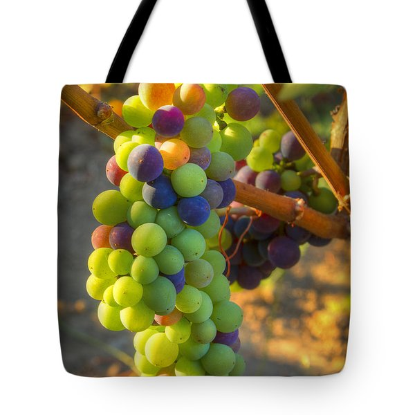 Fading Light Tote Bag by Jean Noren