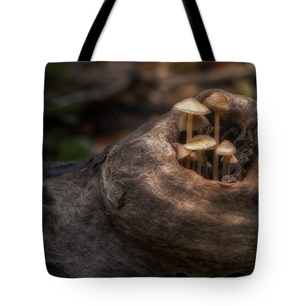 Fairie Garden Tote Bag