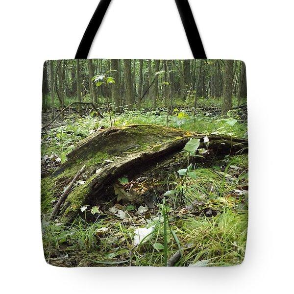 Fairy Bridge  Tote Bag
