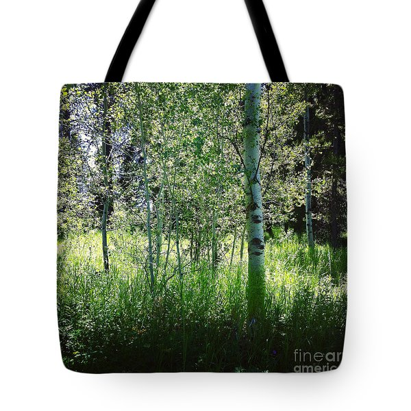 Fairy Circle Tote Bag