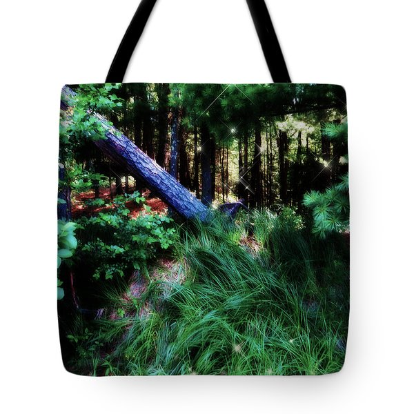 Tote Bag featuring the photograph Fairy Forest by Jamie Lynn
