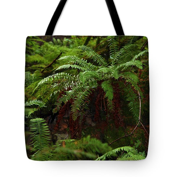 Fairy Hideaway Tote Bag by Jeanette C Landstrom