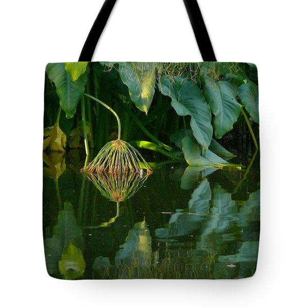 Tote Bag featuring the photograph Fairy Pond by Evelyn Tambour