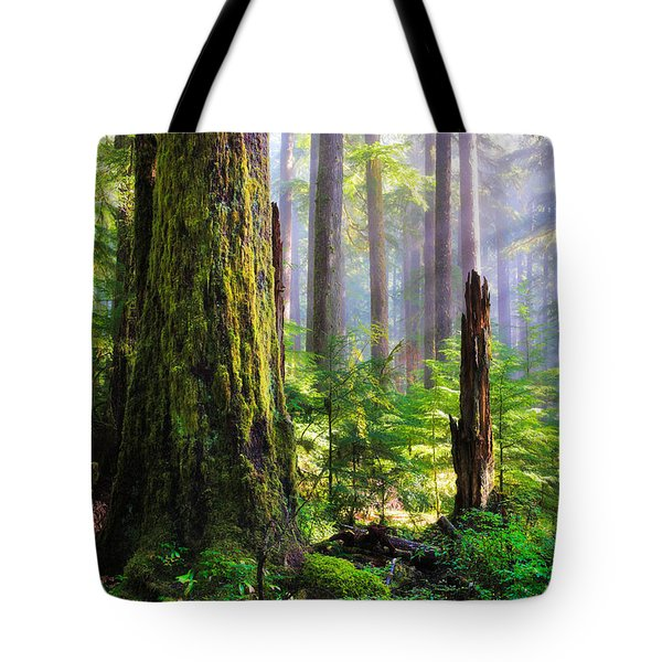 Fairy Tale Forest Tote Bag by Inge Johnsson