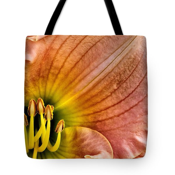 Fairy Tale Pink Daylily Closeup Tote Bag by Madonna Martin