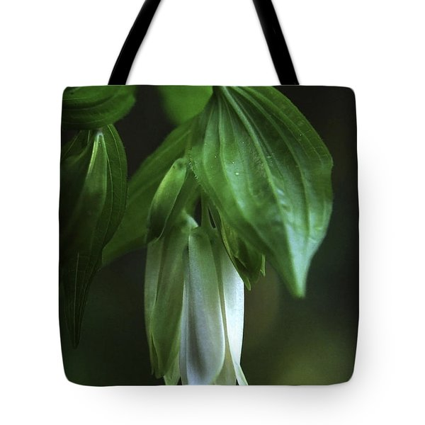 Tote Bag featuring the photograph Fairybells Of The Forest by Betty Depee
