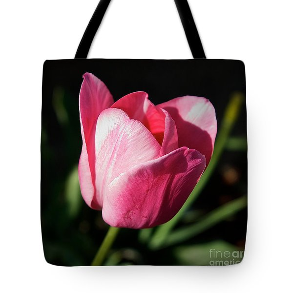 Threshold - Faith In The Light Of Dawn Tote Bag