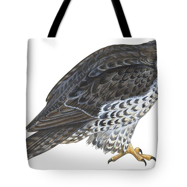 Falcon Tote Bag by Anonymous