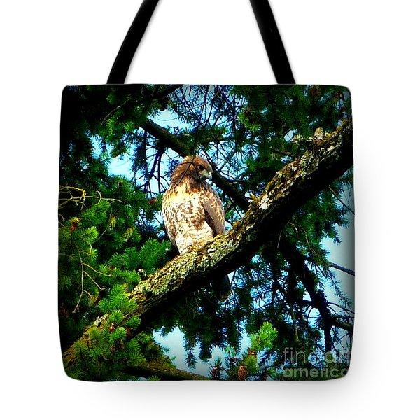 Falcon High Tote Bag by Susan Garren