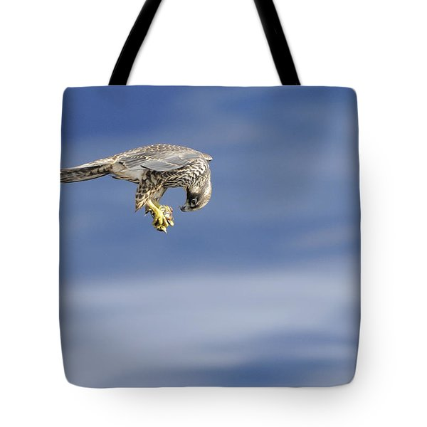 Falcon With Prey Tote Bag