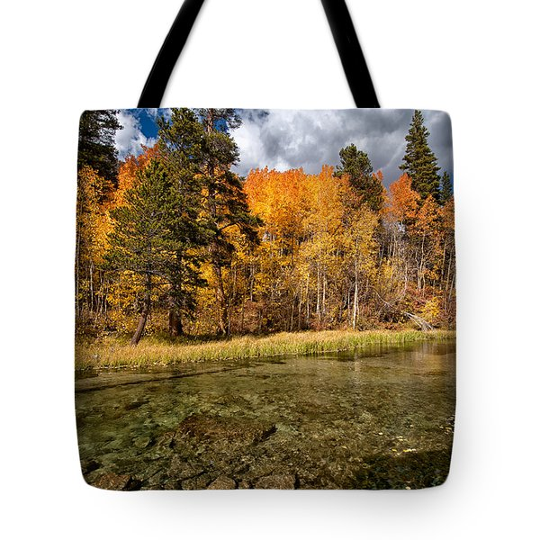Fall Along Bishop Creek Tote Bag by Cat Connor