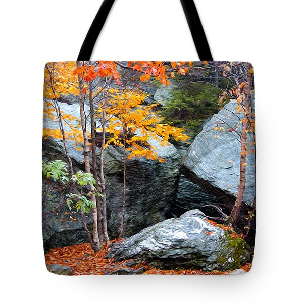 Tote Bag featuring the photograph Fall Among The Rocks by Bill Howard