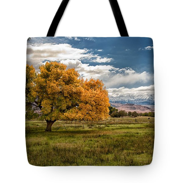 Fall And Winter Tote Bag by Cat Connor