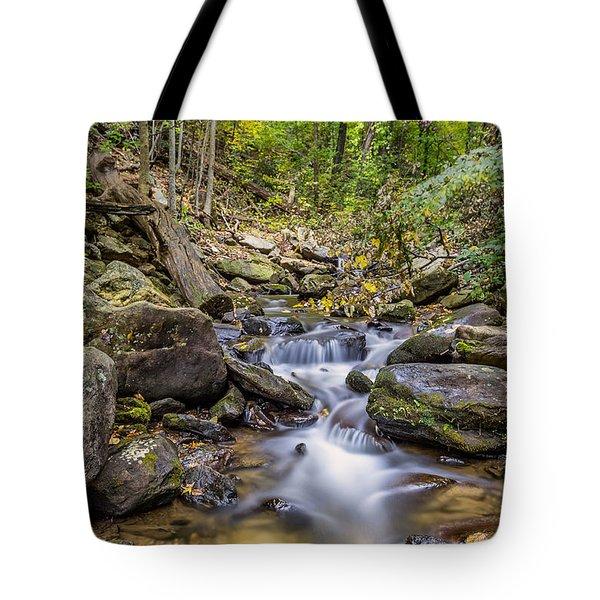 Fall Arrives At Amicalola Falls Tote Bag