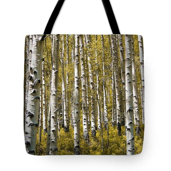 Fall Aspens Tote Bag by Adam Romanowicz