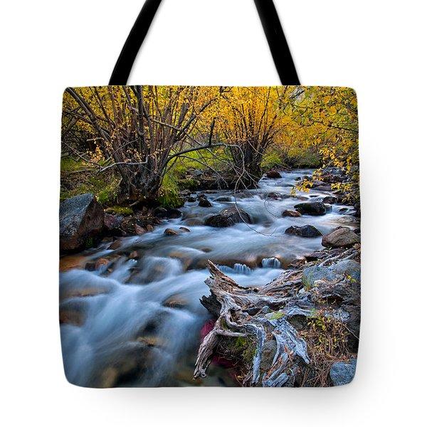 Fall At Big Pine Creek Tote Bag