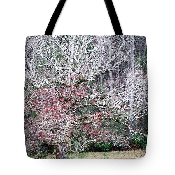 Fall At Cades Cove Tote Bag
