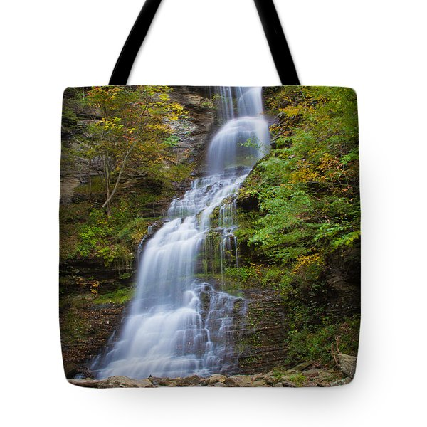 Fall At Cathedral Falls Tote Bag