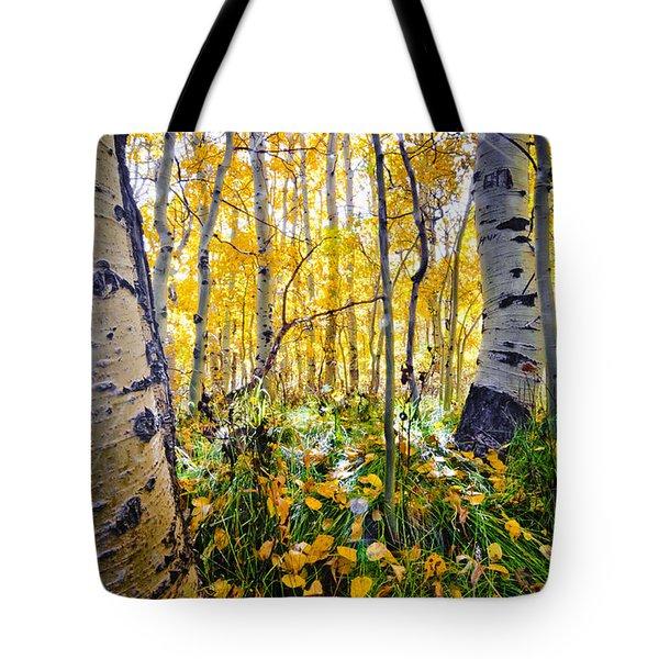 Fall At Silver Lake Tote Bag