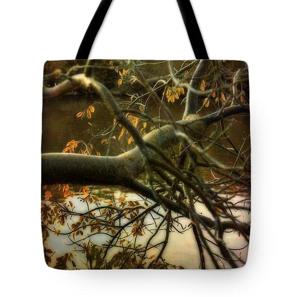 Fall At The Creek Tote Bag by Ellen Heaverlo