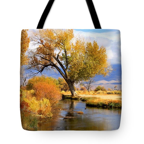 Tote Bag featuring the photograph Fall At The River by Marilyn Diaz