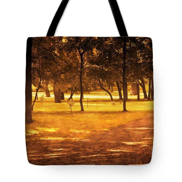 Fall Autumn Park Tote Bag by Michal Bednarek
