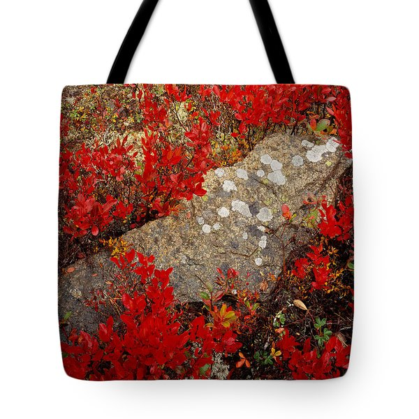 Fall Blueberries And Moss-h Tote Bag