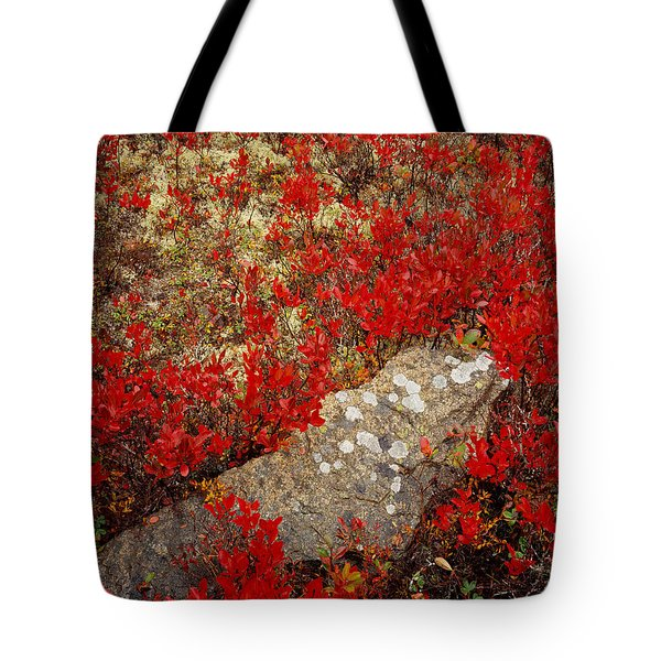 Fall Blueberries And Moss Tote Bag