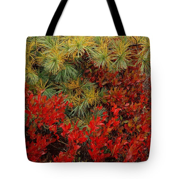Fall Blueberries And Pine-h Tote Bag