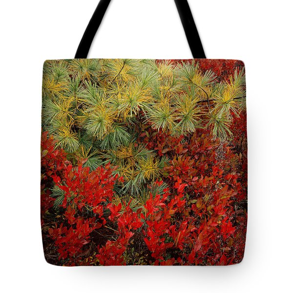 Fall Blueberries And Pine-sq Tote Bag