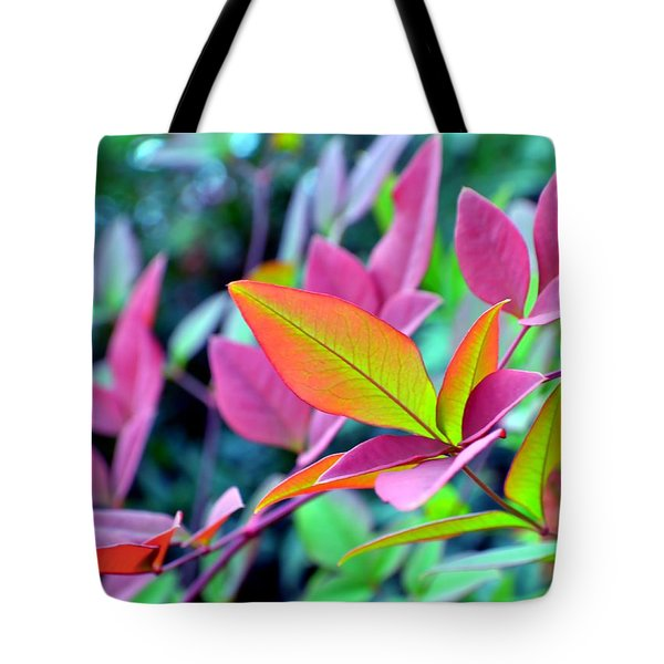 Fall Brilliance Tote Bag by Deena Stoddard
