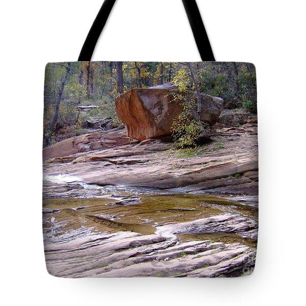 Fall Color 6419 Tote Bag