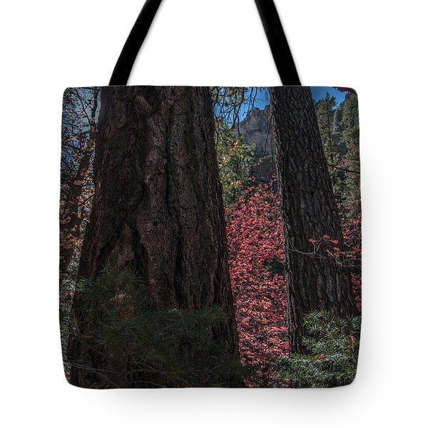 West Fork Perspective Tote Bag