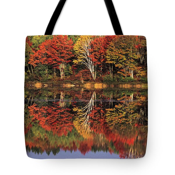 Tote Bag featuring the photograph Fall Color Reflected In Thornton Lake Michigan by Dave Welling