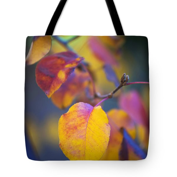 Fall Color Tote Bag by Stephen Anderson