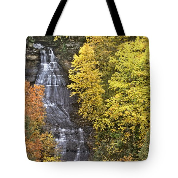 Fall Color Surrounds Chapel Falls On The Michigan Upper Peninsula Tote Bag by Dave Welling